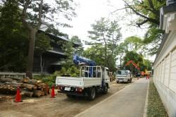 外回廊新設工事(佛殿裏、伐採の様子)